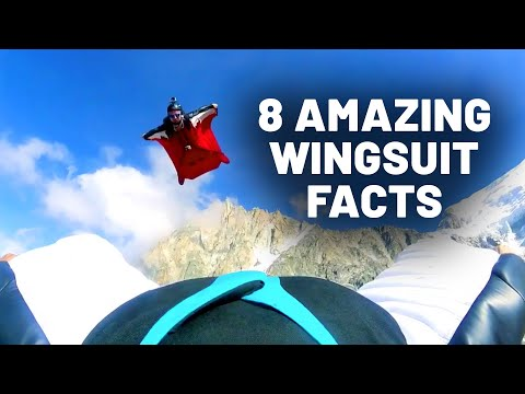 8 Amazing Facts About Wingsuit Flying & BASE Jumping | Dose of Awesome