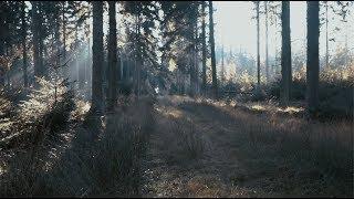 Miki Ratsula - Stones (Official Lyric Video)