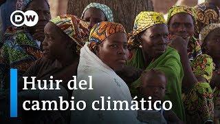 Refugiados climáticos - La verdadera catástrofe ambiental | DW Documental