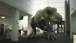Dinosaurs were once the preserve of Paleontologists picking over du...