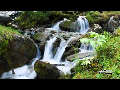 Babbling Brook Water Stream Soundscape Full 60 Minute Track