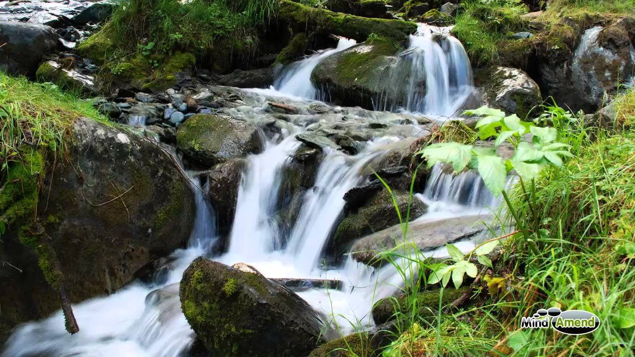 babbling brook water stream soundscape full 60 minute track youtube
