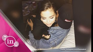 Er zockt, sie kuschelt: Selena Gomez & The Weeknd