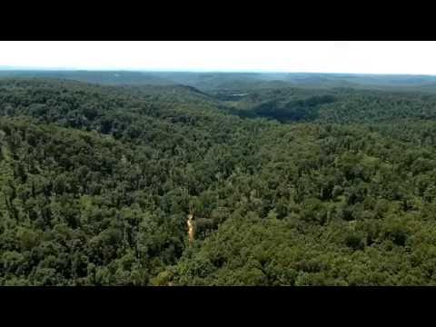 1,430 Acres of Independence County Hunting/Timber Land w/Mineral Rights