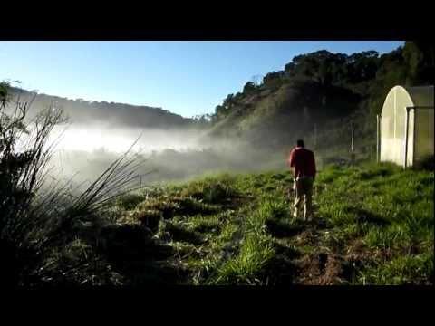 Farmstay in Brazil - Yvan profite du séjour dans la ferme