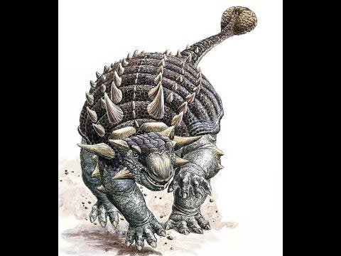 Ankylosaur Evolution Explained