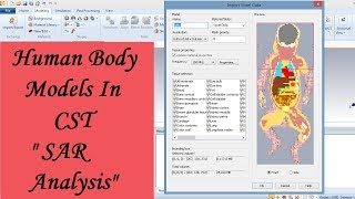 Human Body Models In CST | SAR Analysis