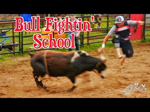 Websters Bull School - Rodeo Time 102