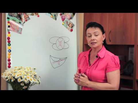 Болит в правом яичнике при беременности