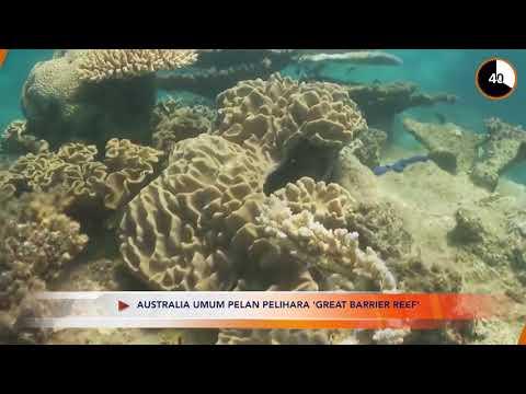 Front Desk : Australia umum pelan pelihara 'Greta Barrier Reef'