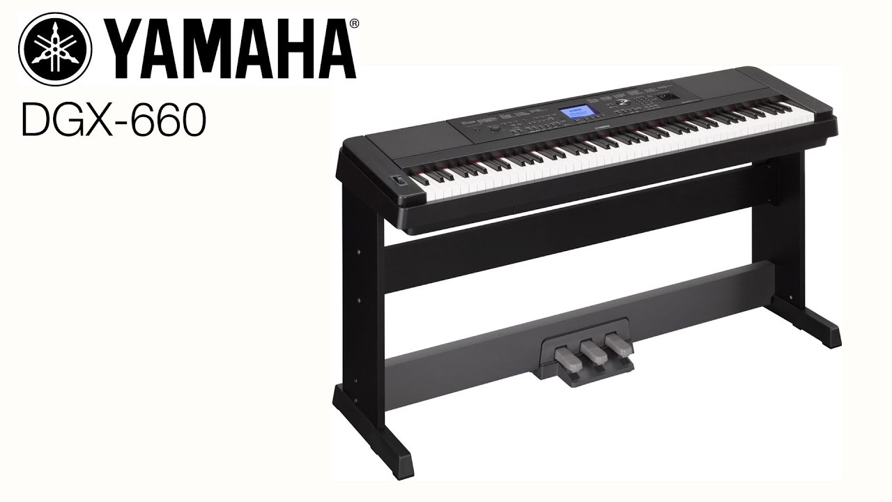 magazin gramofon yamaha dgx 660 youtube. Black Bedroom Furniture Sets. Home Design Ideas