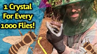 Digging for Crystals & Gems in Canada while Huge Bugs fly all around!