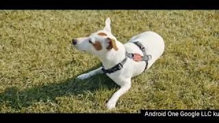 General Mobile GM 9 Pro Android One | Çeken Var Çekemeyen Var