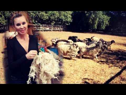 How To Make a Living Crafting Sheep's Wool