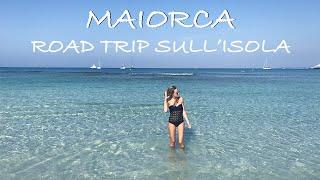 MAIORCA (Cap de Formentor, Portocristo, Grotte del Drago, Cala d'Or, Es Trenc, Palma de Mallorca)