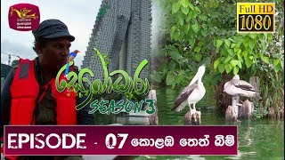 Sobadhara -  Sri Lanka Wildlife Documentary | 2019-04-26 | Colombo Wet Lands Thumbnail