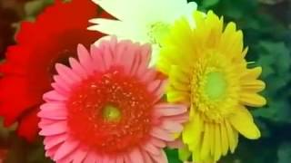 Pon Vilaiyum Bhoomi 24/10/2017