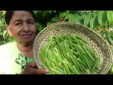 Village Food ❤ Full Okra Fry Recipe prepared in my Village by my Mom