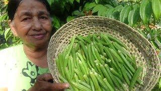 Village Food ❤ Full Okra Fry Recipe prepared in my Village by my Mom