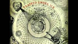 Watch Trapped Under Ice See God video