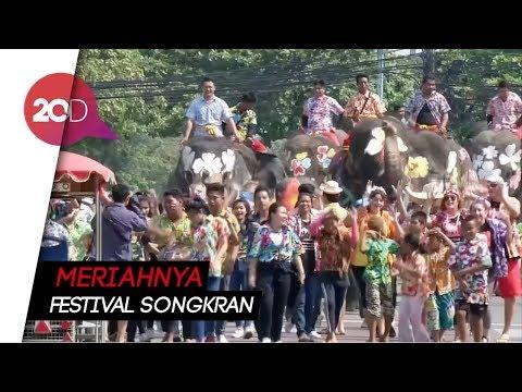 Serunya Perang Air Bareng Gajah di Thailand