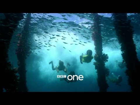 Earth's Natural Wonders: Living on the Edge - Trailer - BBC One