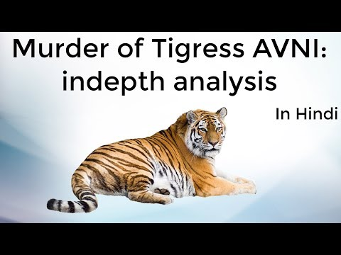 Tigeress Avni controversy, Animal rights activists vs Maharashtra Government, Current Affairs 2018