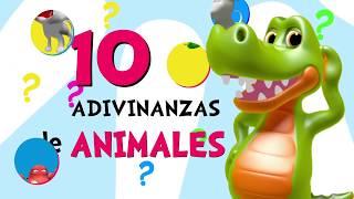 Adivinar Jugando con las 10 Adivinanzas y acertijos de Animales _ Video para niños