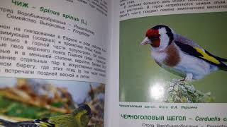 книга о птицах Крыма