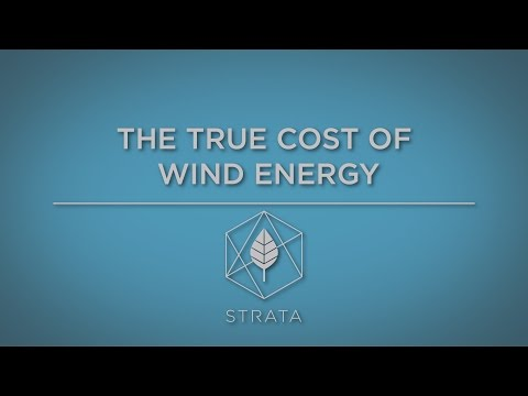 The True Cost of Wind Energy