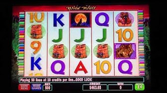 Wild Wolf Slot Win with 5 FREE GAMES!