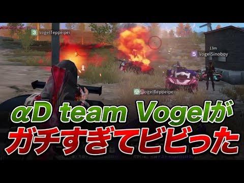 【荒野行動】αD team『Vogel』 がガチすぎてビビった。。。