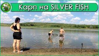 Ловля карпа на новую прикормку SILVER FISH