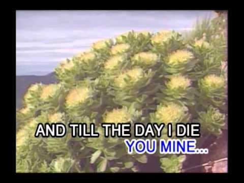David Pomeranz - Born For You (Karaoke / Instrumental) (Videoke)