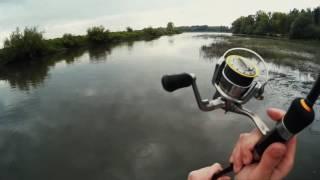 Получасовая рыбалка на пересохшей протоке ... [ fishtracker ]