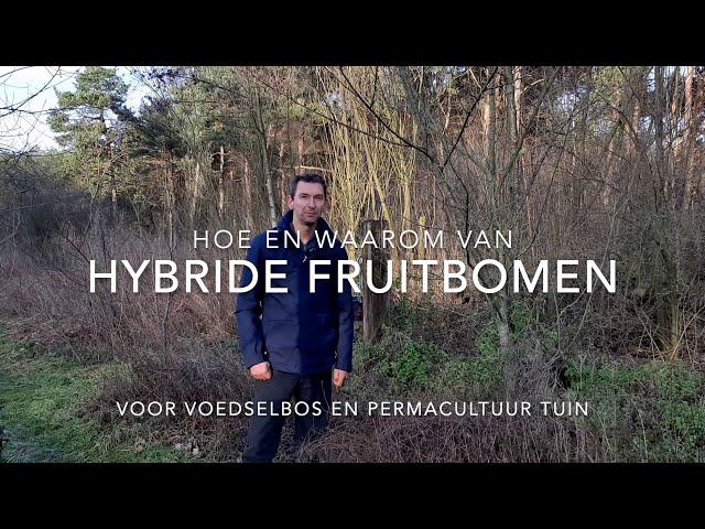 Hybride fruitbomen in je voedselbos