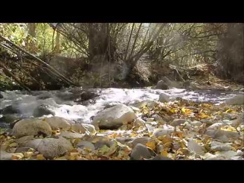 Owens Valley Fall Trip 2016