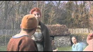 Viking Settlers in Ireland