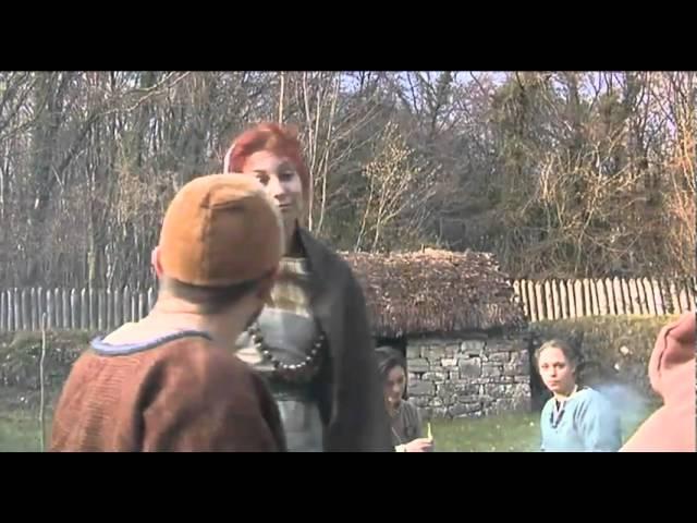 Viking Settlers in Ireland