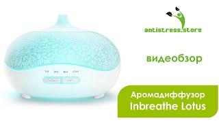 Аромалампа электрическая (ультразвуковая) Inbreathe Lotus обзор | Antistress.Store