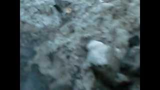 Загрязнение окружающей среды на Казанском Шоссе.(, 2012-04-13T10:13:32.000Z)