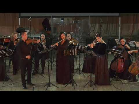 И.С.Бах  - Бранденбургский концерт №4, соль-мажор, BWV 1049