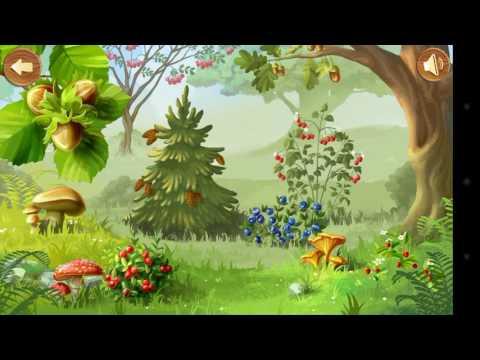 Какие плоды растут в лесу.