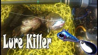 """Ultralight fishing: Lure ini """"Killer"""" banged, SUMPAH Bro!! Mp3"""