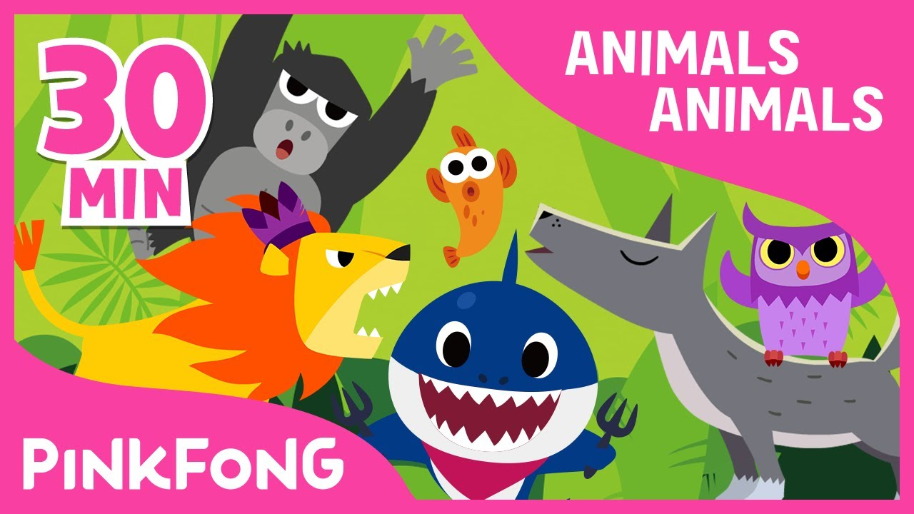 Marvelous Animals, Animals | Baby Shark And More | +Compilation | Animal Songs | Pinkfong  Songs For Children