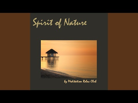 Spirit of Nature (Birds and Water Sounds)