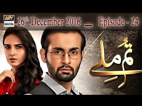 Tum Milay Ep 24 - 26th December 2016 - ARY Digital Drama