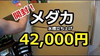 メダカ水槽 開封!42,000円