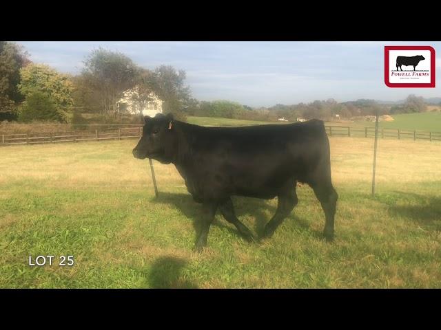 Powell Farms Lot 25