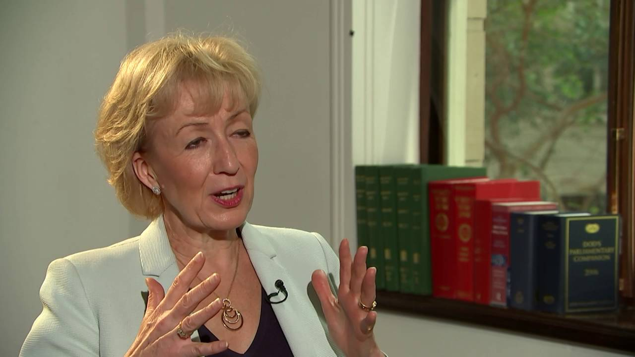 conservative leadership  andrea leadsom on brexit  mark carney and her city cv
